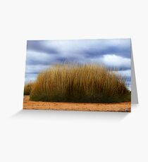 Spinifex. Greeting Card