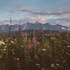 Mountain vibes by ewkaphoto