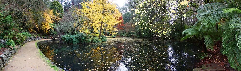 Alfred Nicholas Gardens by Lindsay Knowles