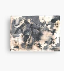 big five,Buffalo,nr2 Canvas Print