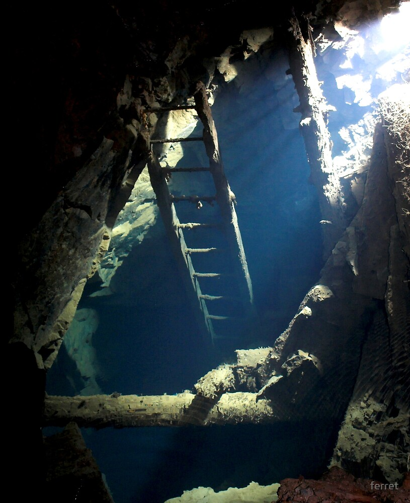Old ladder leading down to long flooded workings in a old copper mine, Devon. by ferret