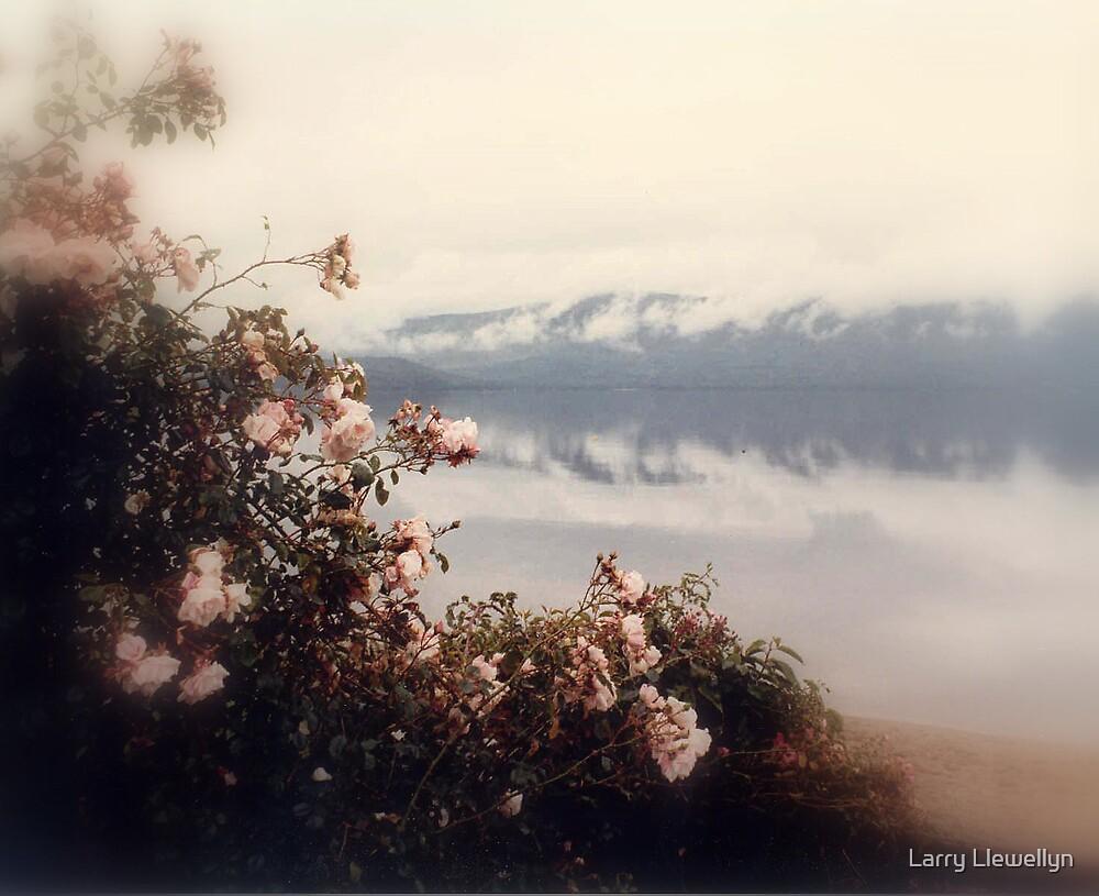 Bonny Scotland in Spring by Larry Llewellyn