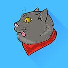 Grey Cat by valeo5
