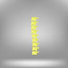 Symbol Spine by valeo5