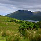 A view of Connemara by annalisa bianchetti