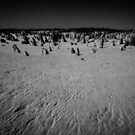 A Desolate View by Skye Harris