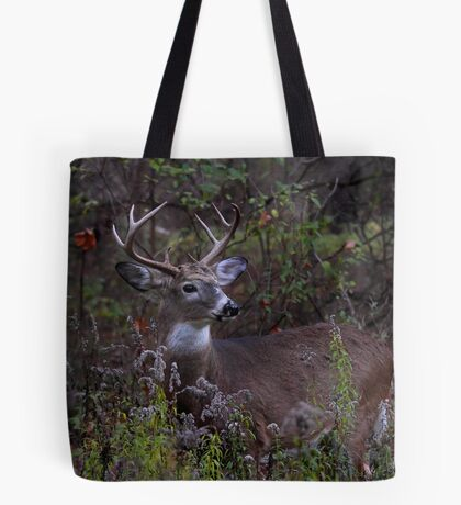 Young Prince - White-tailed Deer Tote Bag