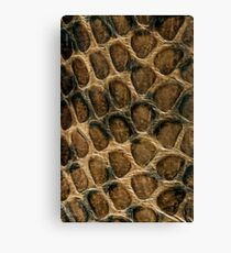 Serpent's skin pattern Canvas Print