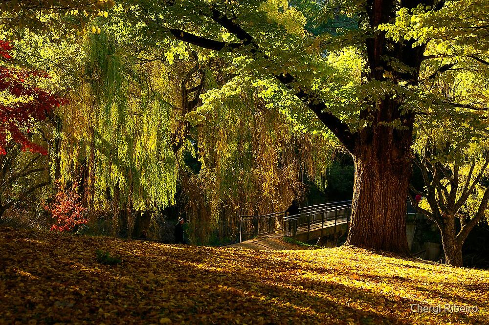 autumn calm by Cheryl Ribeiro