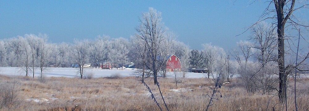 Winter in Farm Country by babyangel