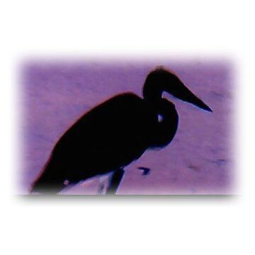 heron by landrich