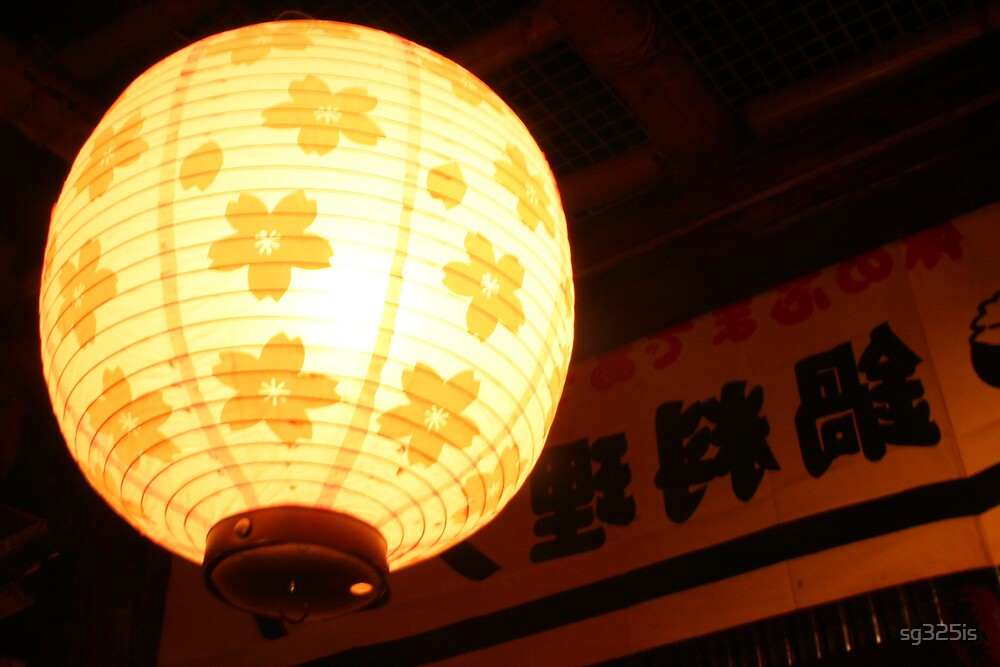 Lantern in the Night by sg325is