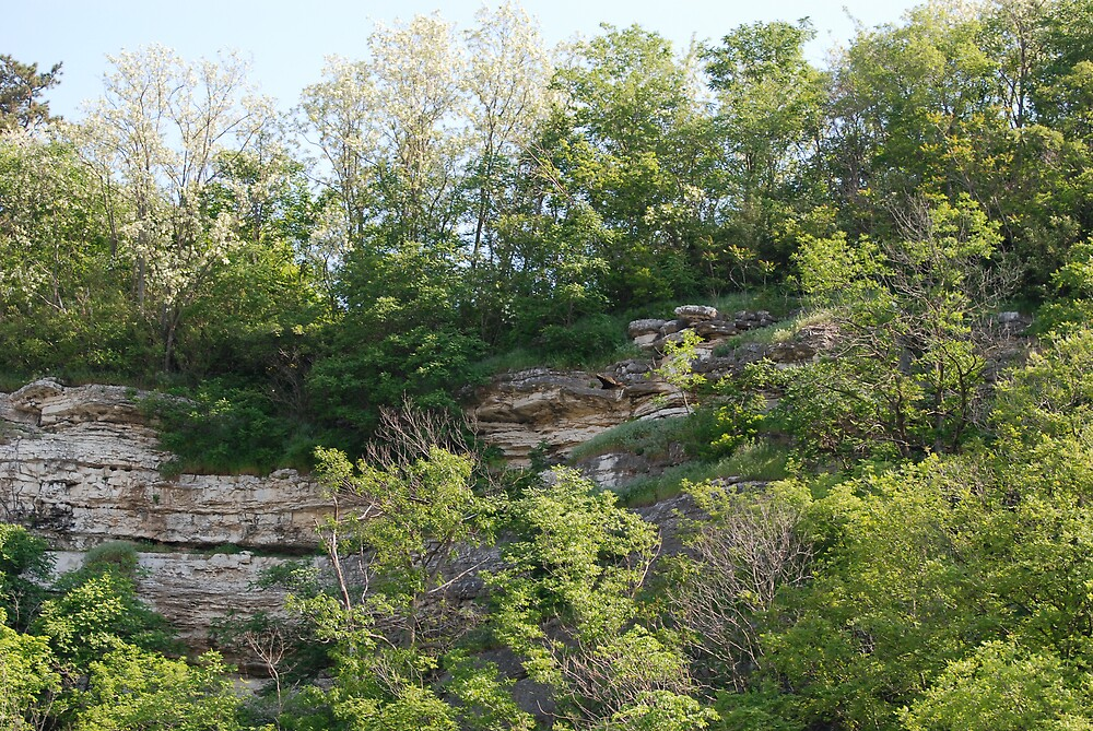 Cliff View near Elsah Illinois by Jim Caldwell