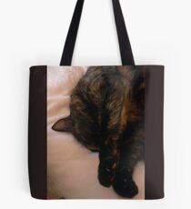 Cat Napping Tote Bag