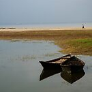Lonely Twins by tarique