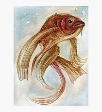 Gold fish. Oil on paper Photographic Print