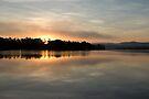 Golden Liquid Dawn ~ Johnstone River, Innisfail, Queensland. by Kerryn Madsen-Pietsch