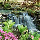 Mini Waterfall by Sandy Keeton