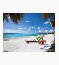 Corky's sunbathing Photographic Print