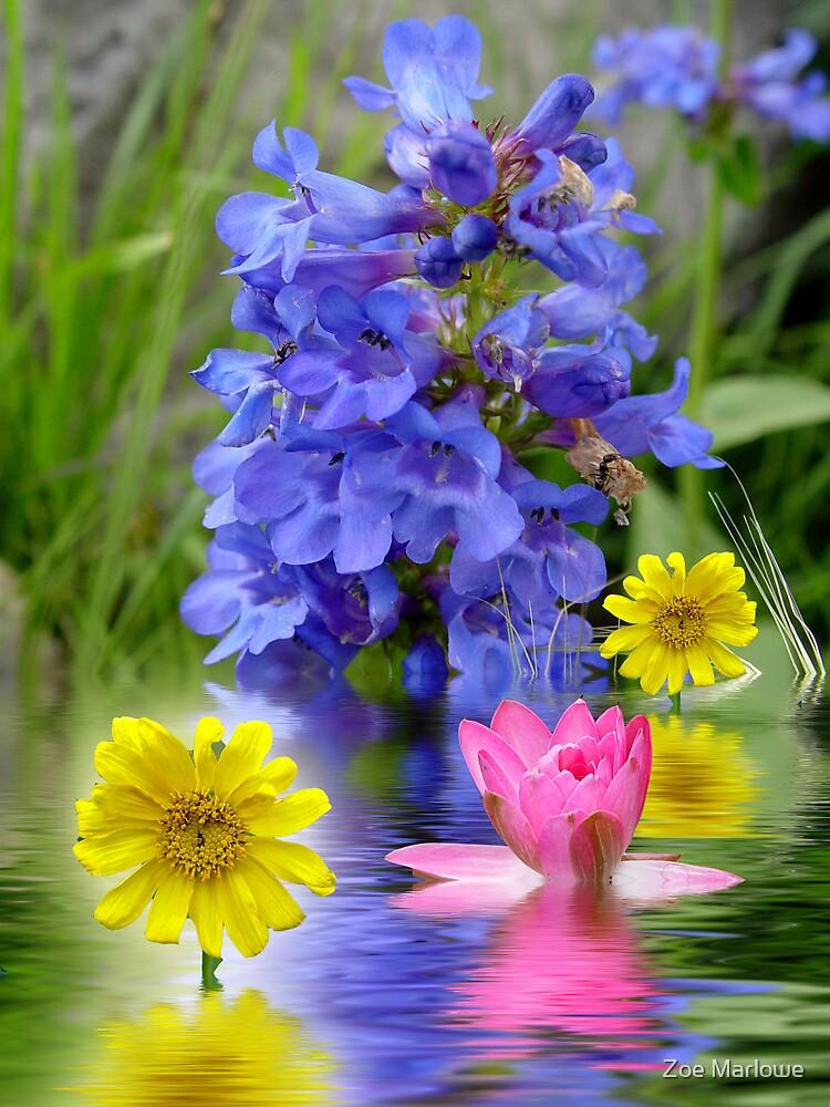 Woodland Bouquet by Zoe Marlowe