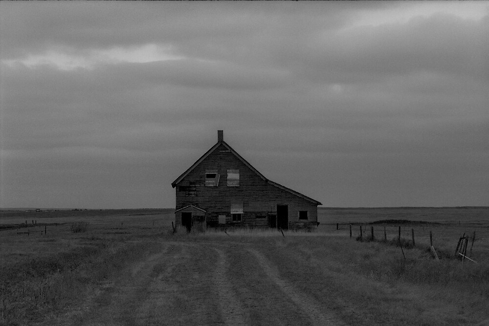 Beyond the winter plain by Catherine McKenna
