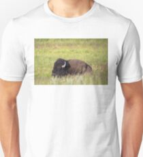 Bison Asleep on Our Trail Unisex T-Shirt