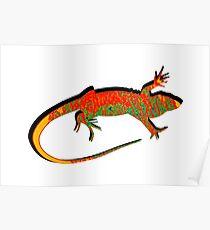 The Wondering Lizard Poster