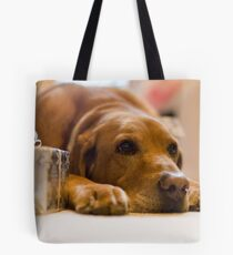 Copper's Gift Low Tote Bag
