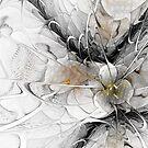Black and White Fractal by Ann Garrett