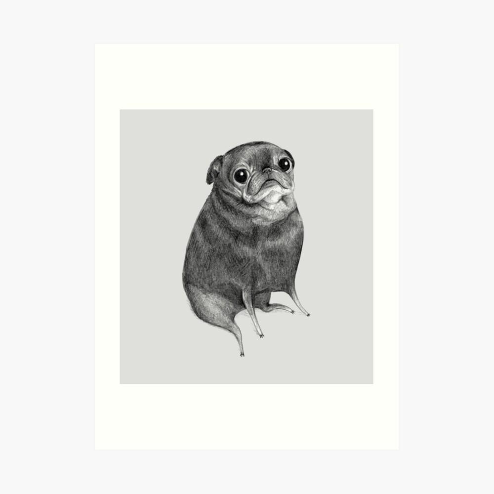 Sweet Black Pug Art Print