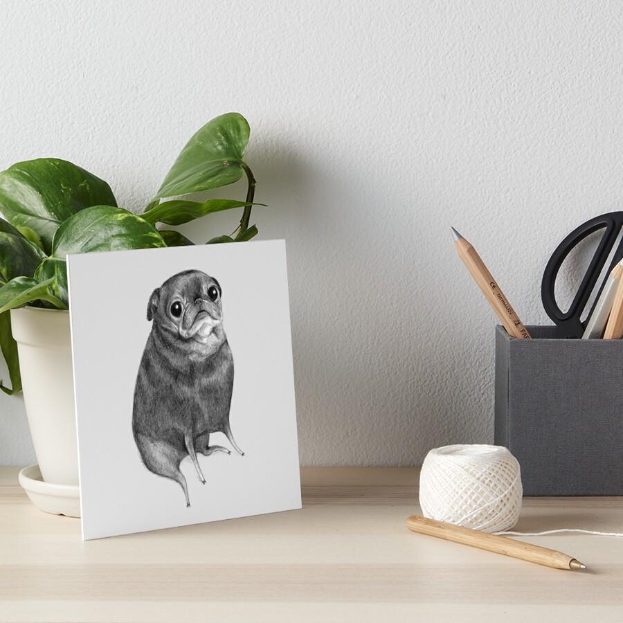 Sweet Black Pug by Sophie Corrigan