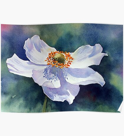 Japanese anemone Poster