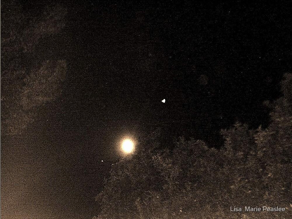 Full Moon by Lisa  Marie Peaslee