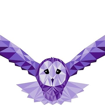 Geometric Owl by Phunt