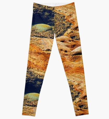 Rock & Algen Leggings