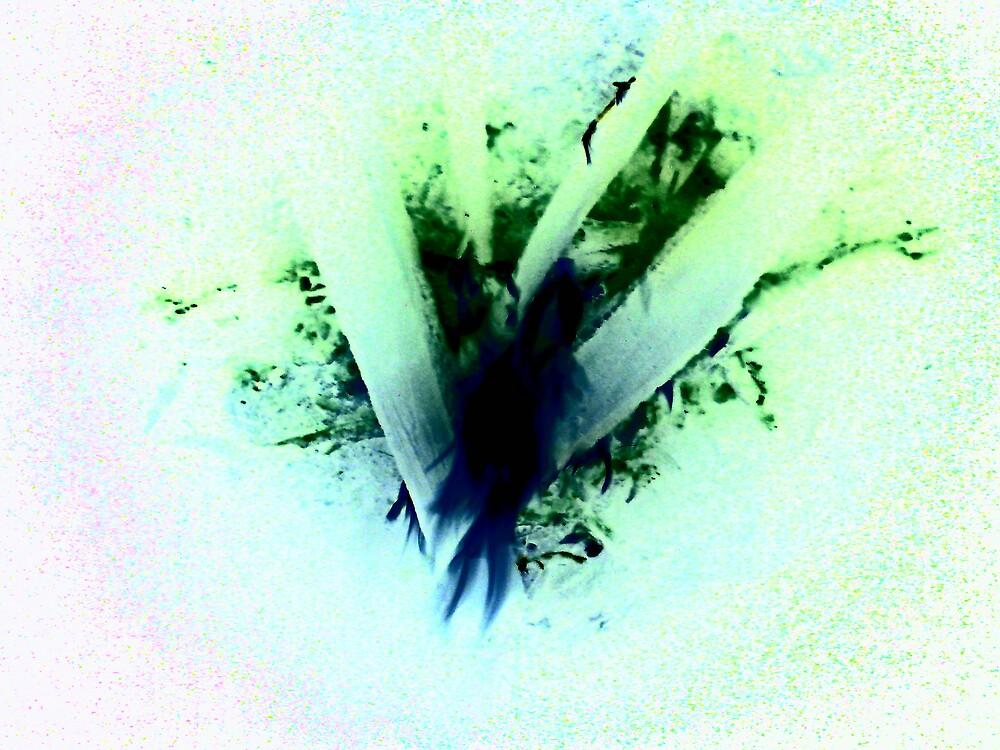 heart fire by Richard  Durocher