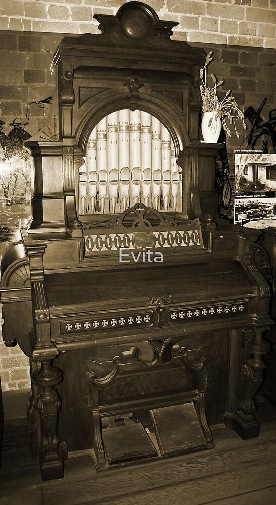 Old Pipe Organ by Evita