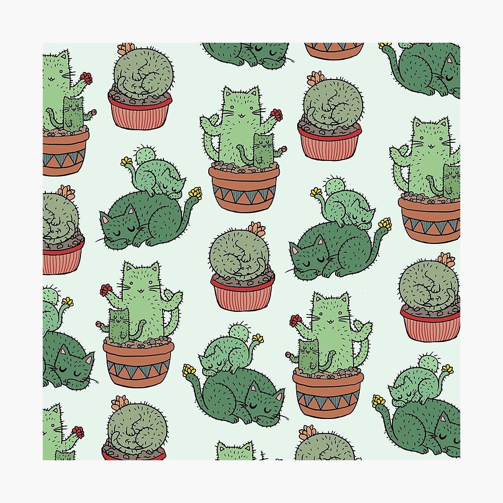 Kaktus Katzen Fotodruck
