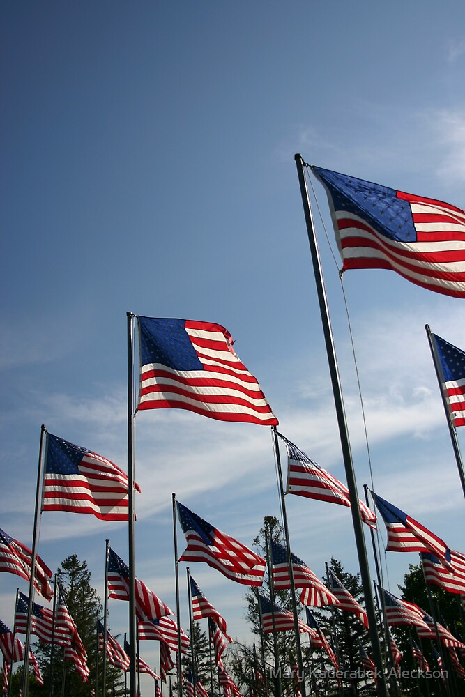 The Flags of USA by Mary Kaderabek-Aleckson