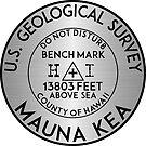 BENCHMARK MAUNA KEA HAWAII GEOCACHING USGS VOLCANO by MyHandmadeSigns
