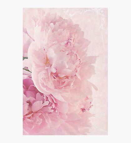 Artsy Multi Pink Peonies  Photographic Print