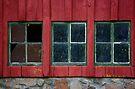Windows with Weathered Charm by Vicki Pelham