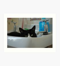 Binky in the Sink Art Print