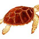 Loggerhead Sea Turtle by Suzannah Alexander