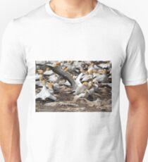 Australasian Gannets - Portland VIC (3805) T-Shirt
