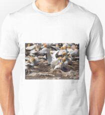 Australasian Gannets - Portland VIC (3810) T-Shirt