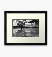 Wet Feet - Gippsland, Victoria Framed Print
