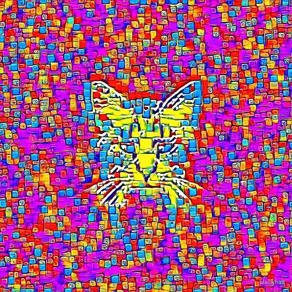Lemon Cat by blackhalt