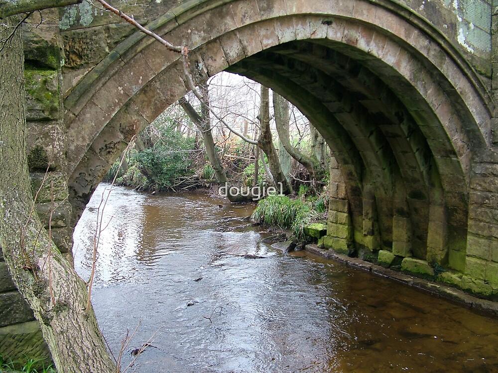 Pack Horse Bridge 2 by dougie1