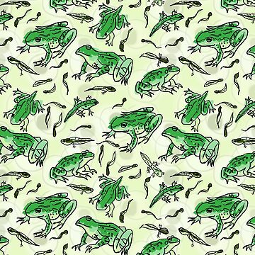 frog life by Kcreations